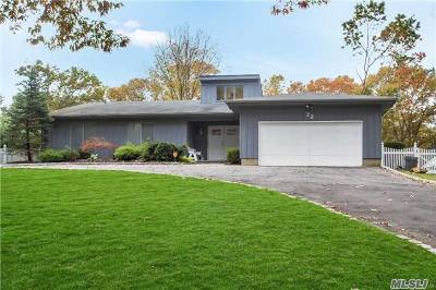 Smithtown Single Family Home For Sale: 22 Wyandanch Blvd