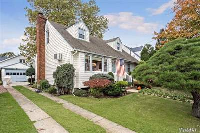 Malverne Single Family Home For Sale: 87 Slabey Ave