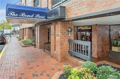 Great Neck Commercial For Sale: 12 Bond St