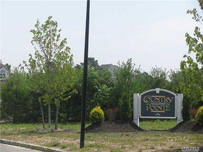 Medford Single Family Home For Sale: 11 Bucks Hill St