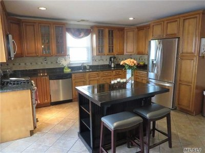 Bellmore Single Family Home For Sale: 208 Marle Pl