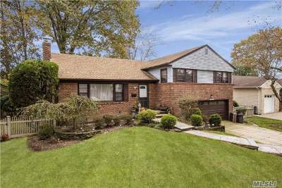 Westbury Single Family Home For Sale: 1924 Plymouth Dr