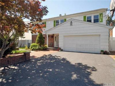 East Meadow Single Family Home For Sale: 105 Melanie Dr