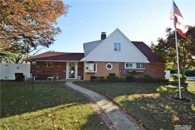Levittown Single Family Home For Sale: 45 Potter Ln