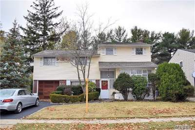 East Meadow Single Family Home For Sale: 251 Clearmeadow Dr