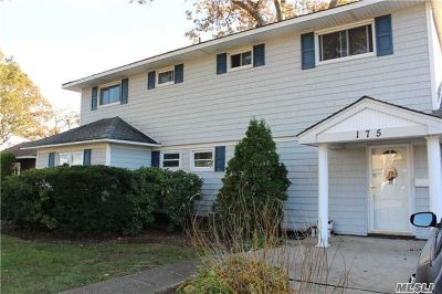 East Meadow Single Family Home For Sale: 175 Fairview Ave