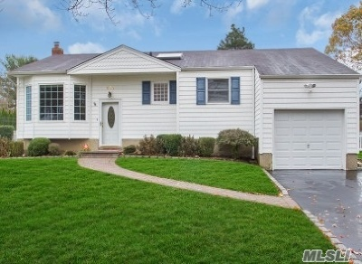 Smithtown Single Family Home For Sale: 131 S Plaisted Ave