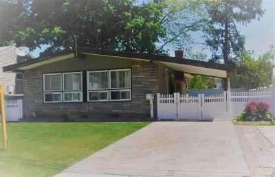 Westbury Single Family Home For Sale: 222 Kinkel St
