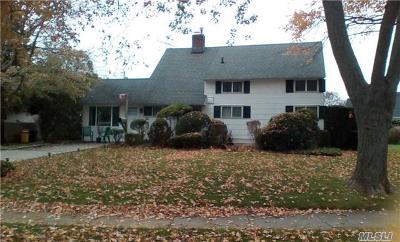 Hicksville Single Family Home For Sale: 10 Arbor Ln
