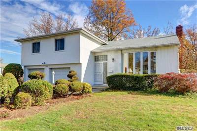 Nassau County Single Family Home For Sale: 288 Continental Dr