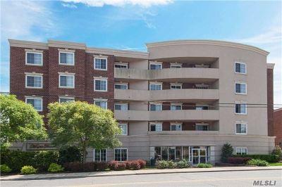 Westbury Condo/Townhouse For Sale: 242 Maple #210