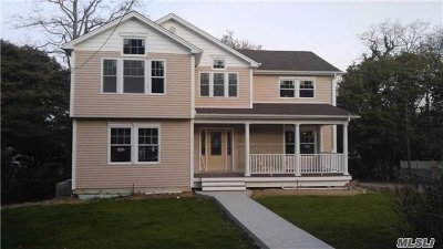 Nassau County Single Family Home For Sale: 91 Mountain Ave