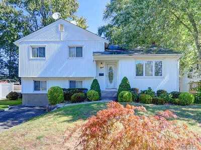 Hicksville Single Family Home For Sale: 9 N Fordham Rd