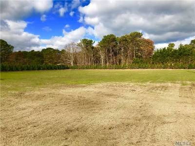 Southampton Residential Lots & Land For Sale: 43 Middle Pond Rd