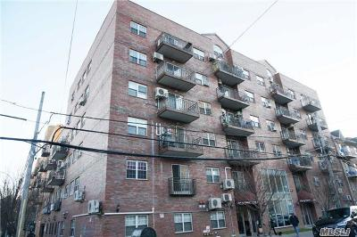 Flushing Condo/Townhouse For Sale: 141-18 Cherry Ave #5F