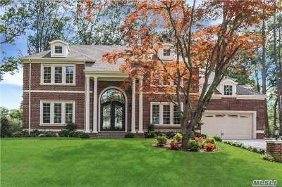 Great Neck Single Family Home For Sale: 30 Meadow Woods Rd