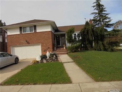 Westbury Single Family Home For Sale: 843 Duncan Dr