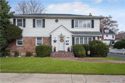 Lynbrook Multi Family Home For Sale: 32 Cherry Ln