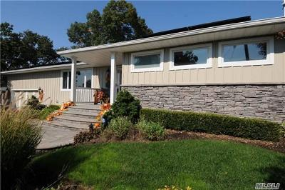 Syosset Single Family Home For Sale: 19 Teibrook Ave