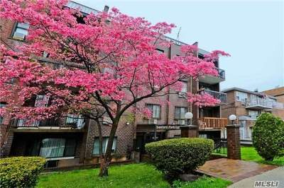 Flushing Condo/Townhouse For Sale: 42-60 157th St #3C