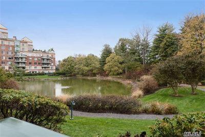 Garden City Condo/Townhouse For Sale: 100 Hilton Ave #M22