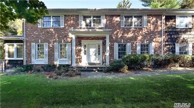 Great Neck Single Family Home For Sale: 230 Lakeville Rd