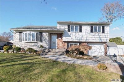 Hicksville Single Family Home For Sale: 2 Amherst Rd