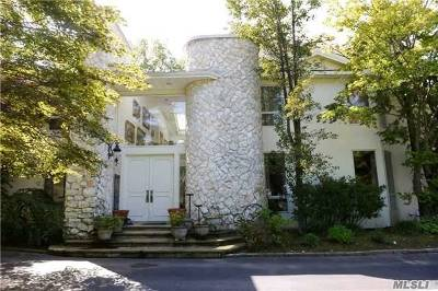 Great Neck Single Family Home For Sale: 66 Meadow Woods Rd