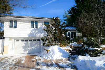 Syosset Single Family Home For Sale: 10 Richard Ln