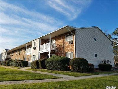 Suffolk County Condo/Townhouse For Sale: 59 Adams Rd #1C