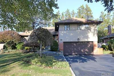 Syosset Single Family Home For Sale: 20 Hillvale Rd