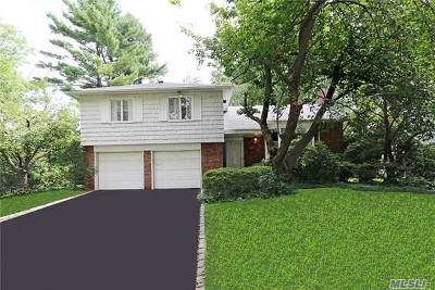 Roslyn Single Family Home For Sale: 121 Ursula Dr