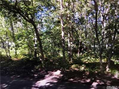 Shirley NY Residential Lots & Land For Sale: $147,000