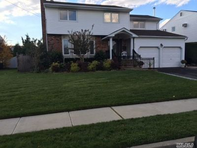 Bellmore Single Family Home For Sale: 2466 Seebode Ct
