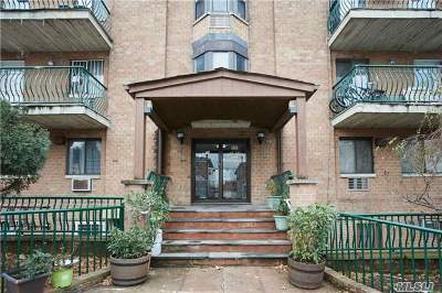 Flushing Condo/Townhouse For Sale: 130-14 60th Ave #2D