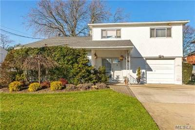 Bellmore Single Family Home For Sale: 2411 Dock Rd