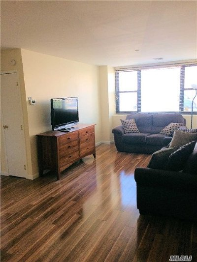 Nassau County Rental For Rent: 185 W Park Ave #100