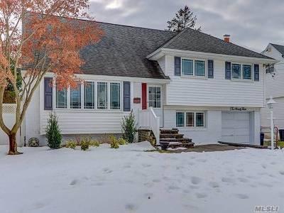 Oceanside Single Family Home For Sale: 293 Virginia Ave