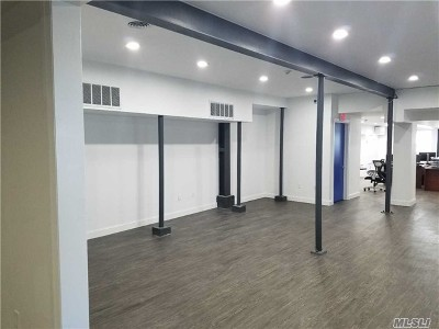 Nassau County Commercial For Sale: 333 Pearsall Ave
