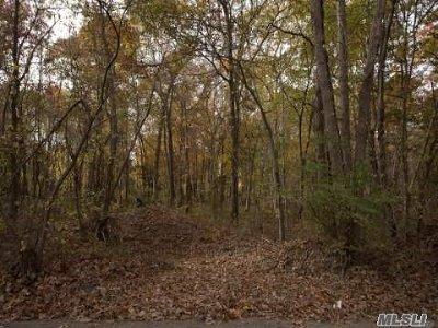 Medford Residential Lots & Land For Sale: 37 Swezeys Rd