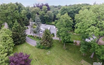 Old Westbury Single Family Home For Sale: 15a Langley Ln