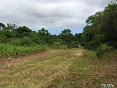 Aquebogue Residential Lots & Land For Sale: 708 Hubbard Ave