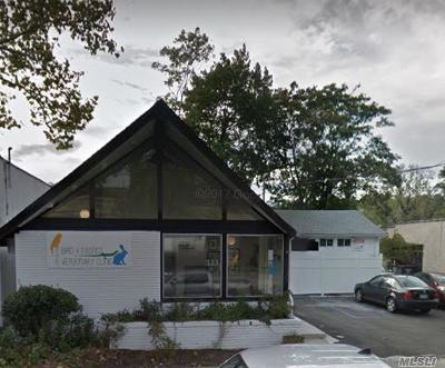 Great Neck Commercial For Sale: 333 Great Neck Rd