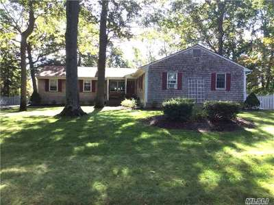 Miller Place Single Family Home For Sale: 27 White Birch Cir