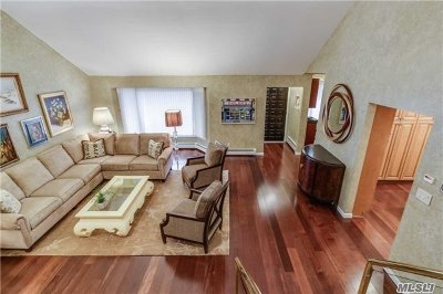 Jericho Single Family Home For Sale: 69 Merry Lane
