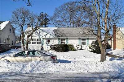 East Meadow Single Family Home For Sale: 140 Diamond Ave