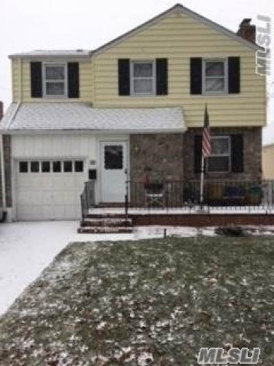 Floral Park Single Family Home For Sale: 79 Raff Ave