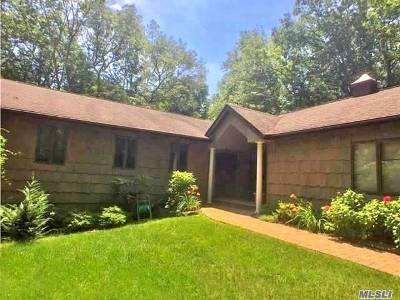 Dix Hills Single Family Home For Sale: 19 Ryder Ave