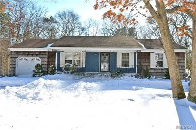 Medford Single Family Home For Sale: 58 Robinson Ave