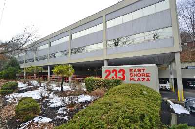 Great Neck Commercial For Sale: 233 E Shore Rd